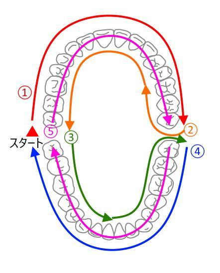 歯磨きの順番イラスト