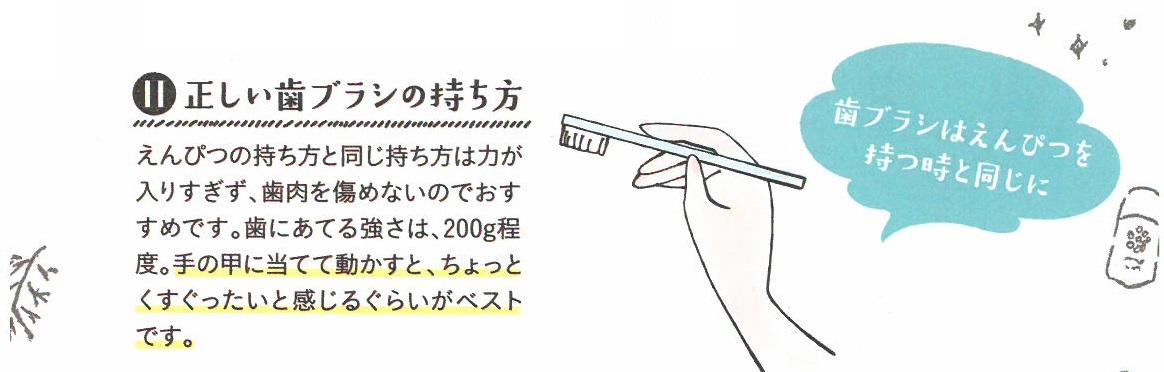 歯ブラシの正しい持ち方