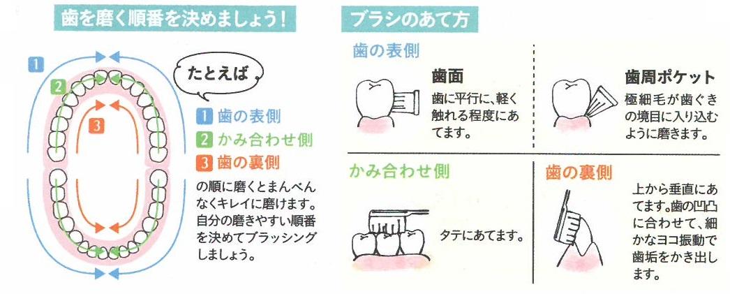 歯ブラシ編